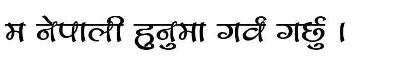 Preview of CV Bihani Regular
